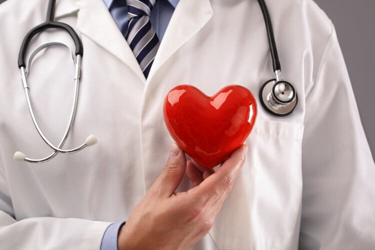 心臓病の診察を行っています